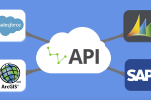 Watch the video: Integrate your business systems with the Boréalis API